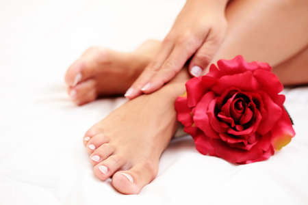 sexy female feet and hands with red rose on white duvet Stock Photo - 5239094