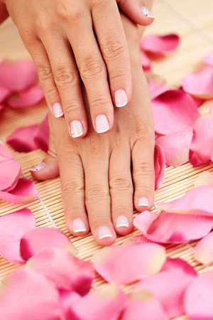 female hands with petal of rose - beauty treatment Stock Photo - 5287778