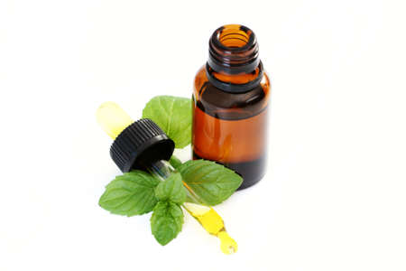 bottle of peppermint oil and fresh mint isolated on white photo