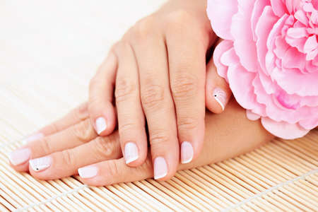 nail care: beautiful female hands with pink rose - beauty treatment Stock Photo