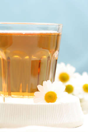 glass of camomille tea - food and drink alternative medicine photo