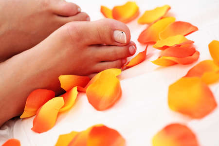 sexy female feet with rose petals on white duvet - beauty treatment Stock Photo - 5669779