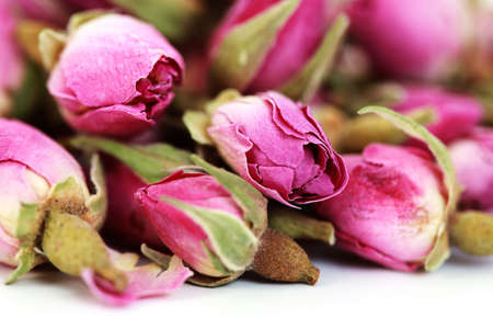 dried roses isolated on white background - flowers and plants photo