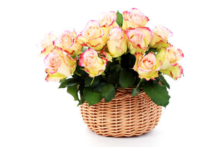 basket full of roses on white background - flowers and plants photo