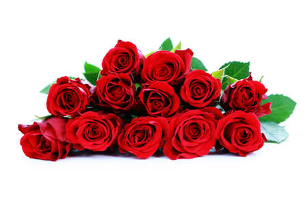 bunch of beautiful roses - flowers and plants Stock Photo