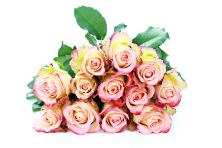 bunch of roses on white background - flowers and plants Stock Photo - 6234240