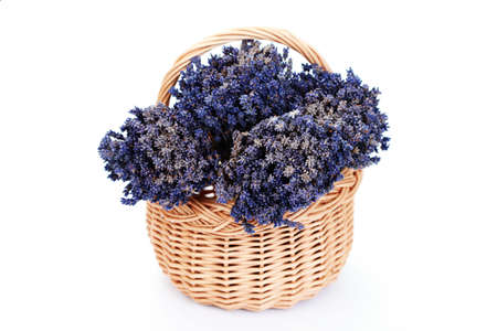 basket with lavender flowers on white - flowers and plants Stock Photo - 6312675