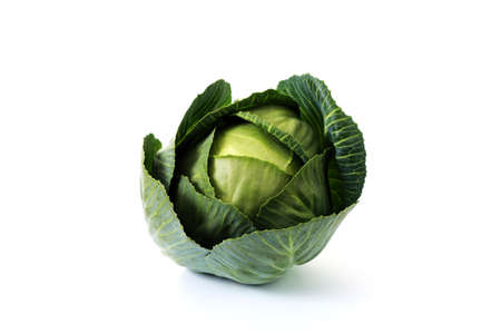 green cabbage on white background - fruits and vegetables photo