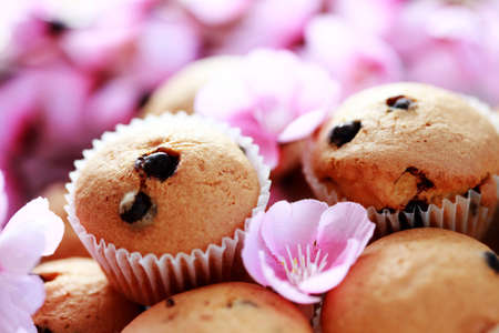 delicious muffins with chocolate - sweet food photo