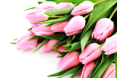 pink tulips: bouquet of lovely pink tulips on white background - flowers Stock Photo