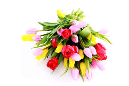 bouquet of lovely tulips on white background - flowers Stock Photo - 6803210