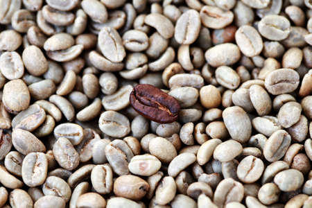 unroasted: background of unroasted and few roasted coffee beans - coffee time