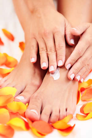 feet in bed: female hands and feet with petal of rose - beauty treatment Stock Photo