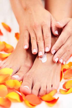 manos mujeres y pies con pétalos de Rosa - tratamiento de belleza  Foto de archivo