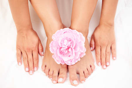 sexy female feet and hands with pink rose on white duvet Stock Photo - 7338675