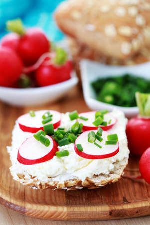 buns with cottage cheese and fresh radish - food and drink
