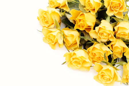 bunch of lovely yellow roses - flowers and plants Stock Photo - 8935307