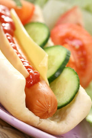 fresh and delicious hot dog with vegetables Stock Photo - 8936475
