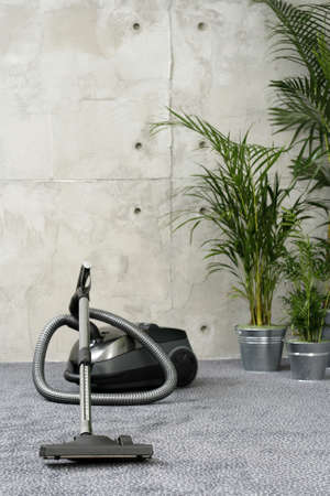 vacuum cleaner - howsework - domestic life photo