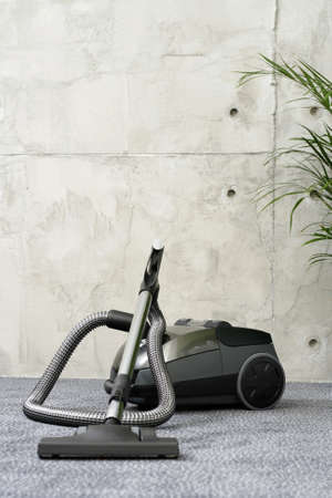 domestic life: vacuum cleaner - howsework - domestic life