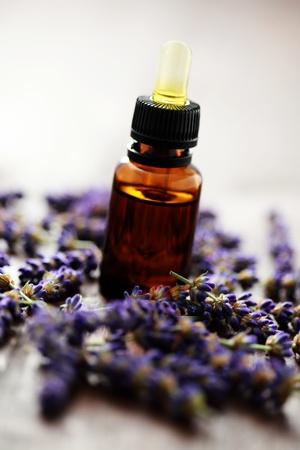 bottle of lavender massage oil with fresh lavender flowers - beauty treatment Stock Photo - 9333523