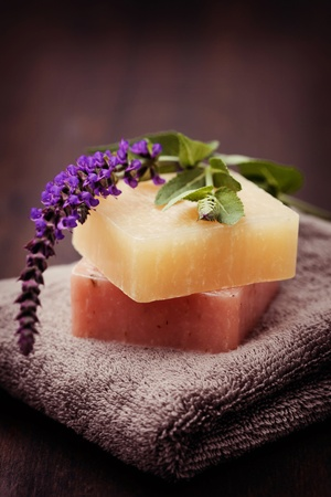 natural sage soap with fresh sage - beauty treatment Stock Photo - 9734884