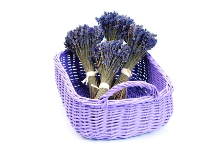 basket with lavender flowers on white - flowers and plants Stock Photo - 10180019
