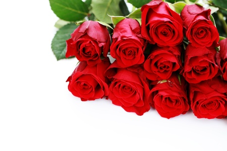 red roses: bunch of beautiful roses - flowers and plants Stock Photo
