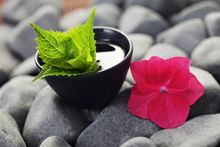 pebbles with bowl of water and fresh flower - beauty treatment shallow DOF Stock Photo