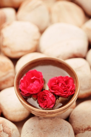 stone bowl: pebbles with bowl of water and fresh pink rose - beauty treatment shallow DOF