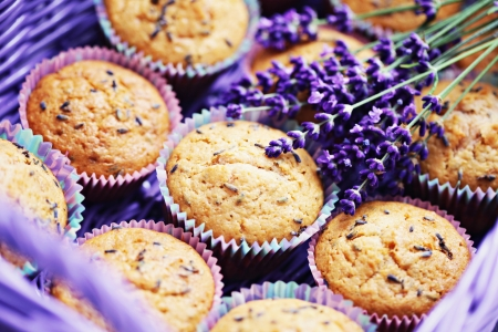 delicious lavender muffins with fresh flowers - sweet food  shallow DOFF