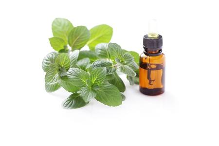 bottle of mint essential oil - alternative medicine