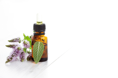 essential oil and mint - health and beauty Banque d'images