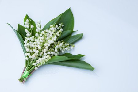 lovely bouquet of lily of the valley - flowers and plants