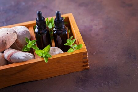 oregano essential oil and fresh leaves - beauty treatment Banque d'images