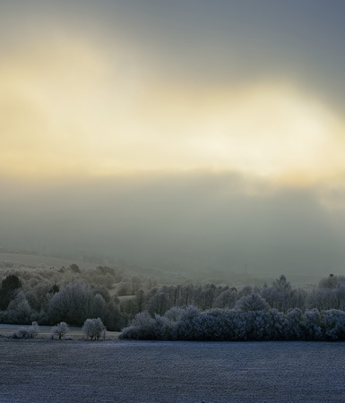 inversion: Landscape with trees and fog. Winter inversion in Slovakia. Freeze land. Low sky scenery at sunrise. Stock Photo