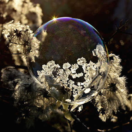 Frozen soap bubble. Cold winter liquid ball experiment. Freezing water with icy patter texture