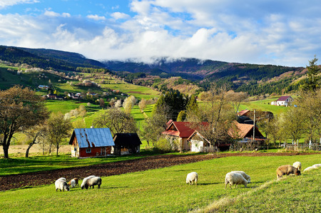 Spring landscape in Slovakia. Rural countryside in Polana region. Fields and meadows with blooming cherries