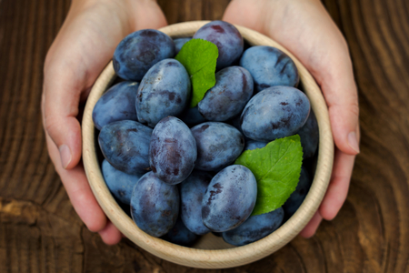 Fresh blue plums in hands on wood table background. Sweet autumn fruit. Delicious and healthy raw food full of vitamins.