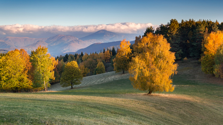 Fall in Slovakia. Meadows and fields landscape near Povraznik. Autumn color trees at sunrise.