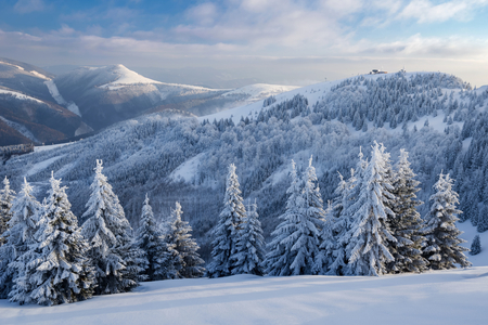 Winter landscape in Slovakia. Velka Fatra mountains under snow. Frozen snowy trees and dark sky panorama.