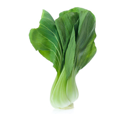 Chinese Vegetable cabbage on white background