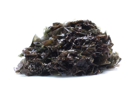 dried seaweed isolated on white background