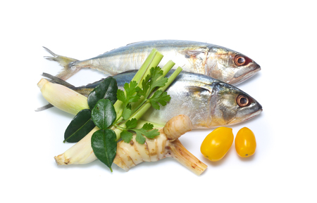 Fresh mackerel isolated on white background