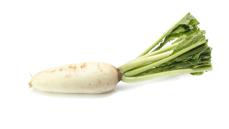fresh white radish with slices isolated on white background