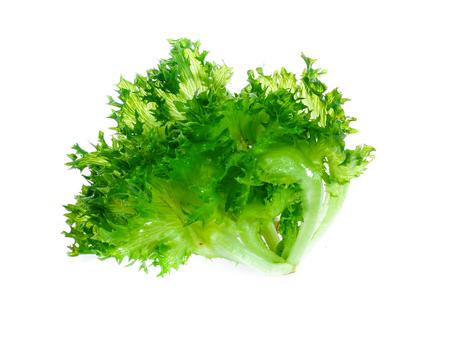 Fresh lettuce leaves isolated on white 版權商用圖片