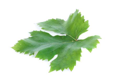 Green leaf grape
