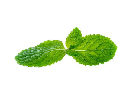 Fresh raw mint leaves isolated on white 版權商用圖片