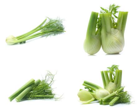 Fresh, organic fennel on a white 版權商用圖片