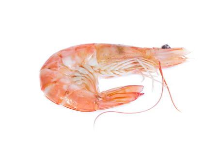 Shrimp isolated on the white